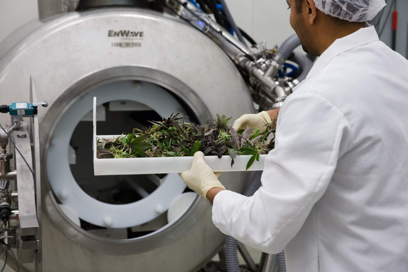 EnWave Announces Changes to its Equipment Purchase Agreement with The Green Organic Dutchman